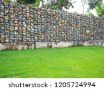 texture for the background of... | Shutterstock . vector #1205724994