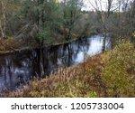 autumn dark forest river... | Shutterstock . vector #1205733004