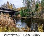 autumn forest river bridge... | Shutterstock . vector #1205733007
