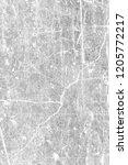 grey grunge abstract wall... | Shutterstock . vector #1205772217
