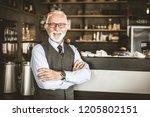 success motivates me. senior... | Shutterstock . vector #1205802151