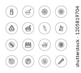 carrot icon set. collection of... | Shutterstock .eps vector #1205819704