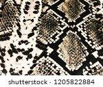 fabric texture in snake pattern ...   Shutterstock . vector #1205822884