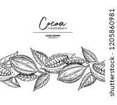 cocoa border. vector superfood... | Shutterstock .eps vector #1205860981