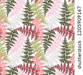 fern frond herbs  tropical... | Shutterstock .eps vector #1205909167