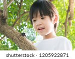 cute asian child looking... | Shutterstock . vector #1205922871