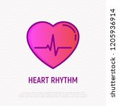 heart rhythm thin line icon.... | Shutterstock .eps vector #1205936914