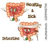 cartoon illustration of a... | Shutterstock .eps vector #1205940754