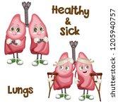 cartoon illustration of healthy ... | Shutterstock .eps vector #1205940757