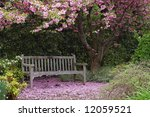 Empty Park Bench Underneath A...