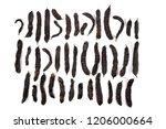 carob fruits assortment...   Shutterstock . vector #1206000664