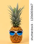 pineapple fruit with sun... | Shutterstock . vector #1206003667