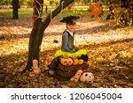 girl in halloween holiday is... | Shutterstock . vector #1206045004