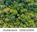 aerial top view of green... | Shutterstock . vector #1206110344