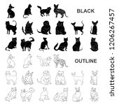 breeds of cats black icons in... | Shutterstock .eps vector #1206267457