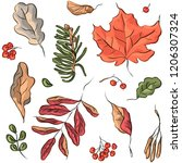 seamless pattern with autumn... | Shutterstock .eps vector #1206307324