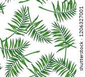 vector vintage botanical... | Shutterstock .eps vector #1206327001