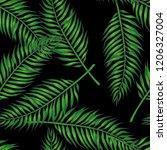 vector vintage botanical... | Shutterstock .eps vector #1206327004