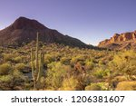 Arizona Scenic Desert Landscape ...
