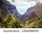 mountain serpentine. landscape... | Shutterstock . vector #1206388354