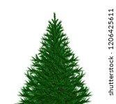 bushy unadorned christmas tree... | Shutterstock .eps vector #1206425611