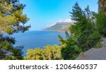 mallorca north coast cliff line ... | Shutterstock . vector #1206460537