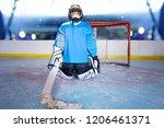 young ice hockey goalie... | Shutterstock . vector #1206461371