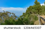 mosquitoes on mallorca's coast... | Shutterstock . vector #1206465337