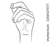 isolated vector illustration.... | Shutterstock .eps vector #1206527077