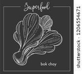 bak chay bushy vegetable... | Shutterstock .eps vector #1206554671