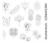set of nature linear... | Shutterstock .eps vector #1206641584