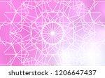 light pink vector natural... | Shutterstock .eps vector #1206647437
