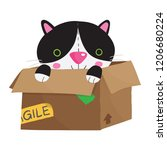 vector illustration of calico... | Shutterstock .eps vector #1206680224