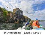 khabarovsk region  russia  ...   Shutterstock . vector #1206743497