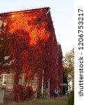 autumn landscape in the city... | Shutterstock . vector #1206753217