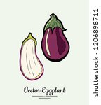 eggplant   hand drawn... | Shutterstock .eps vector #1206898711