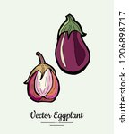 eggplant   hand drawn... | Shutterstock .eps vector #1206898717