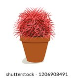 spiny cactus with red needles... | Shutterstock .eps vector #1206908491