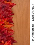 autumn background with red and... | Shutterstock . vector #1206997834