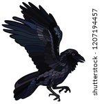 vector illustration of raven... | Shutterstock .eps vector #1207194457