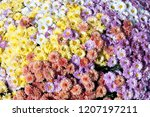 A Huge Bouquet Of Flowers Of...
