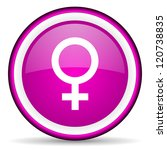 sex violet glossy icon on white ... | Shutterstock . vector #120738835