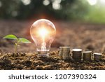 lightbulb with small tree and... | Shutterstock . vector #1207390324