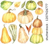 watercolor autumn pumpkin set... | Shutterstock . vector #1207426777
