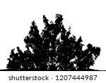 realistic silhouette of a bush... | Shutterstock .eps vector #1207444987