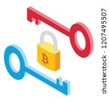 crypto nodes lock and key in...   Shutterstock .eps vector #1207495507