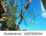 terrible dangerous car after a... | Shutterstock . vector #1207505434