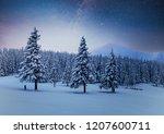 Dairy Star Trek In The Winter...