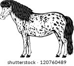 appaloosa,appaloosa pony,breed,contour,dark,equestrian,equestrian sport,hobby,horse,horse racing,horse riding,illustration,line,mare,pet