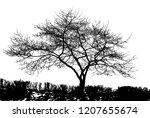 realistic tree silhouette in... | Shutterstock . vector #1207655674